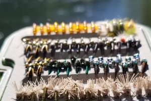 Fly Fishing Consultation with Top Water Trips in Pennsylvania