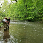 Fly Casting Lessons & Fly Fishing Lessons on French Creek With Top Water Trips