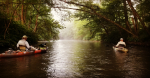 Kayak Rental on the Schuylkill River with Top Water Trips Canoe & Kayak Rental Service