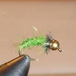 Green Caddis Fly for FIshing the Little Schuylkill River on a Guided Fishing trip with Top Water Trips in Pennsylvania